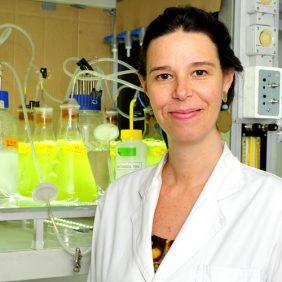 Nicole Ehrenfeld Stolzenbach