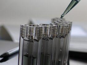 otros proyectos austral biotech